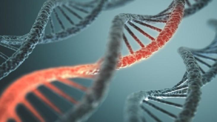 DNA HOSPITALAR - Novo teste genético promete maior precisão no diagnóstico do câncer de mama